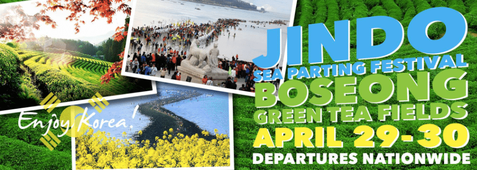 Jindo Sea Parting Festival & Boseong Green Tea Fields