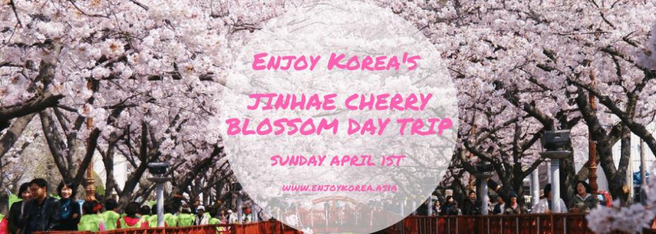 Jinhae Cherry Blossom Festival 2018